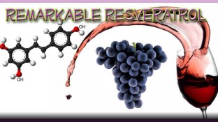 Remarkable Resveratrol