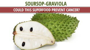 Soursop-Graviola - Could this Superfood Prevent Cancer?