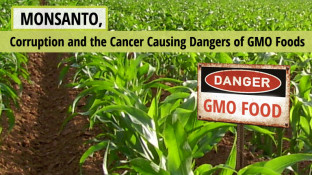Monsanto, Corruption, and the Cancer Causing Dangers of GMO Foods (video)