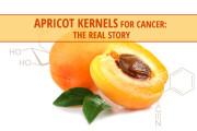 Apricot-2