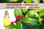Wintergreen-oil