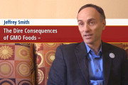 GMO-Foods-Consequences