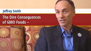 The Dire Consequences of GMO Foods (video)