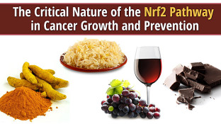 The Critical Nature of the Nrf2 Pathway in Cancer Growth and Prevention