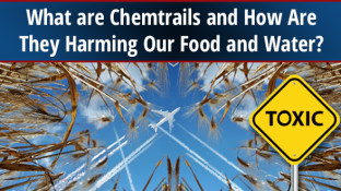 What are Chemtrails and How Are They Harming Our Food and Water?