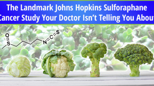 The Landmark Johns Hopkins Sulforaphane Cancer Study Your Doctor Isn't Telling You About