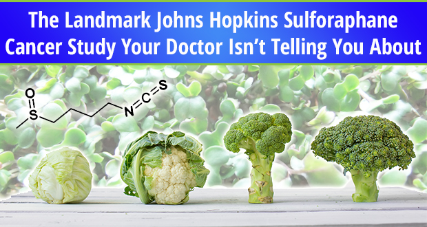 john-hopkins-cancer-fighting2