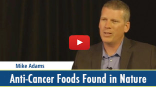 Anti-Cancer Foods Found in Nature (video)