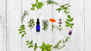 Top 4 Essential Oil Pairs for Gut Health