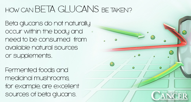 How Beta Glucans Boost Immunity Amp Fight Cancer