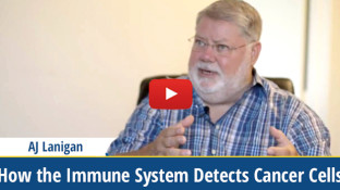 How a Healthy Immune System Detects Cancer Cells (video)