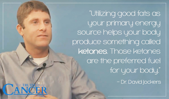 Quote by Dr. David Jockers about good fats in your diet.