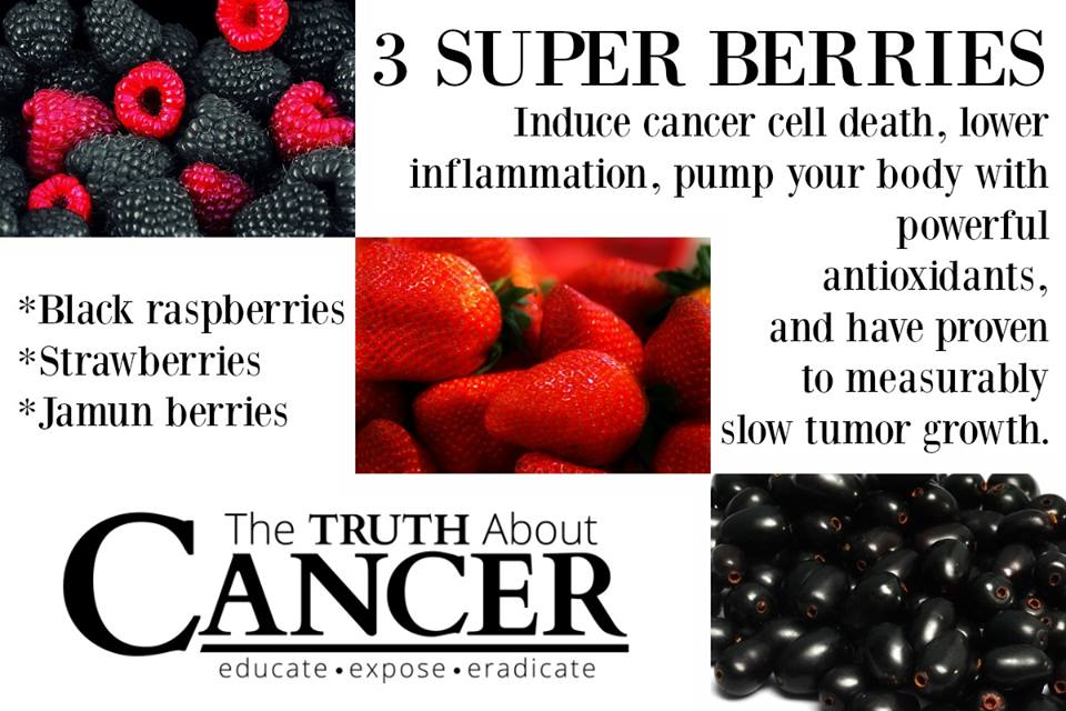 Three super berries you should add to your anti-cancer diet.