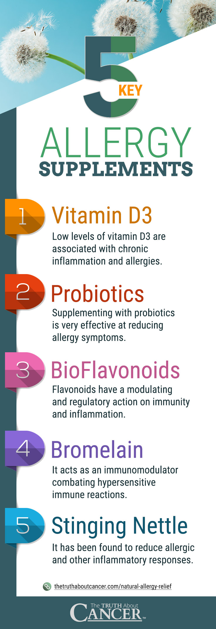 Here are 5 Key Allergy Supplements: Vitamin D3, Probiotics, BioFlavonoids, Bromelain, and Stinging Nettle.