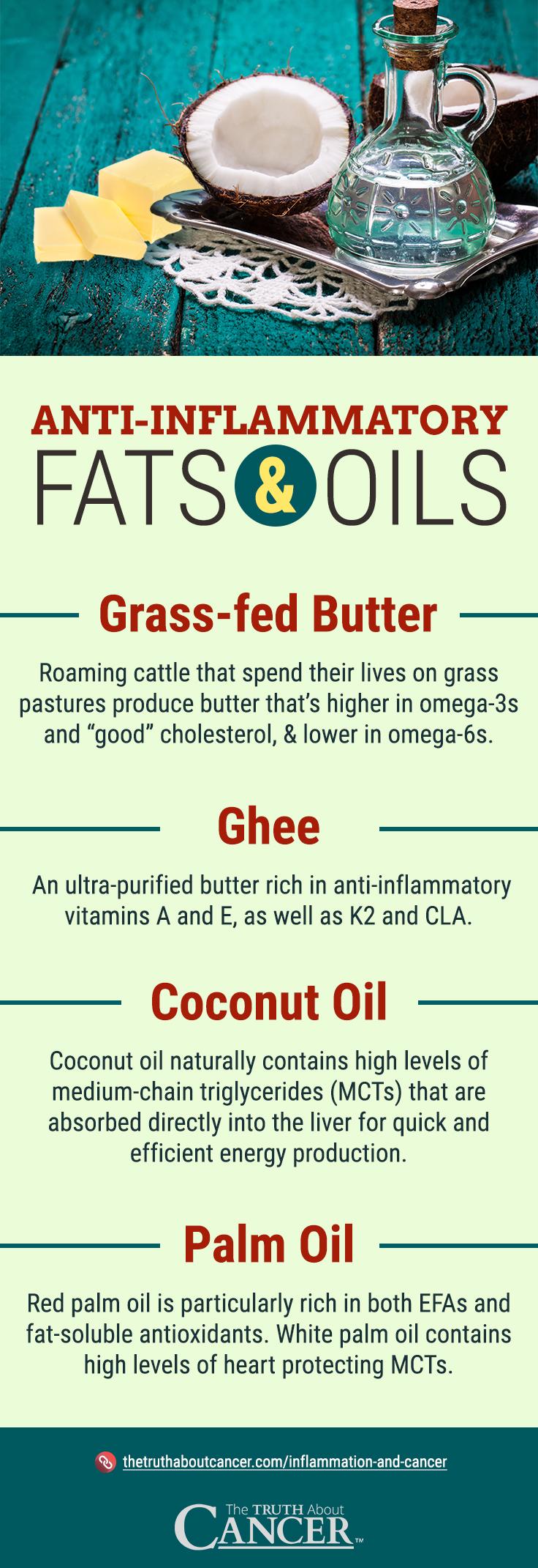 Anti-Inflammatory Fats - Infographic