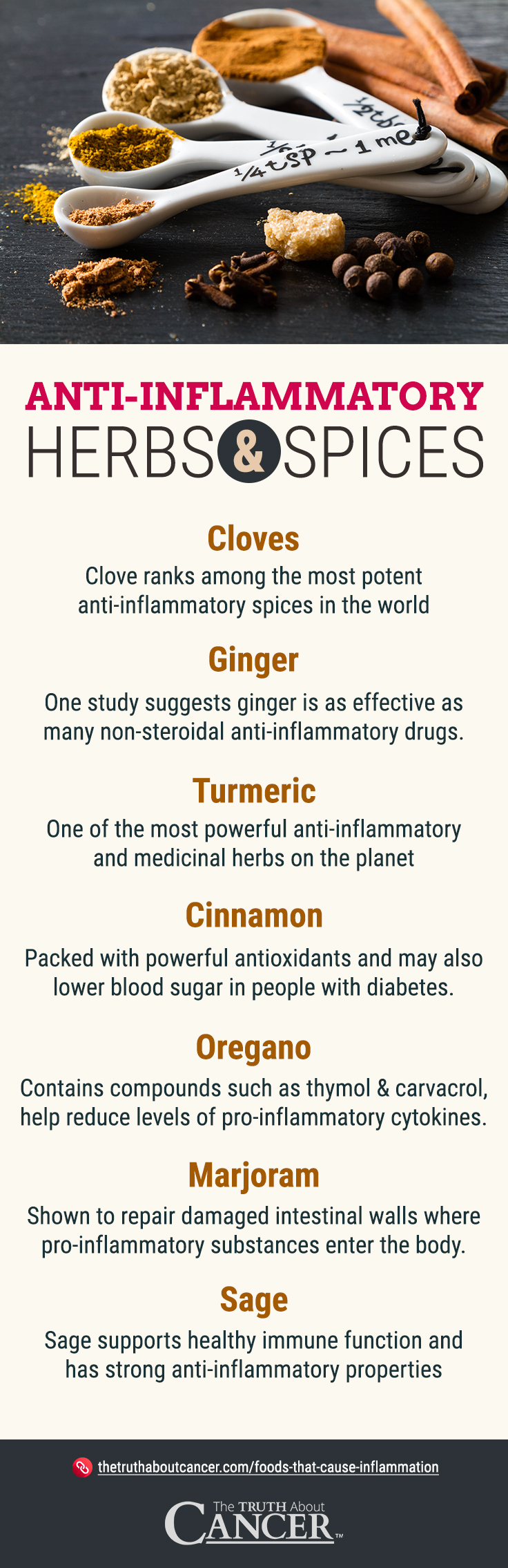 Anti-Inflammatory Spices - Infographic