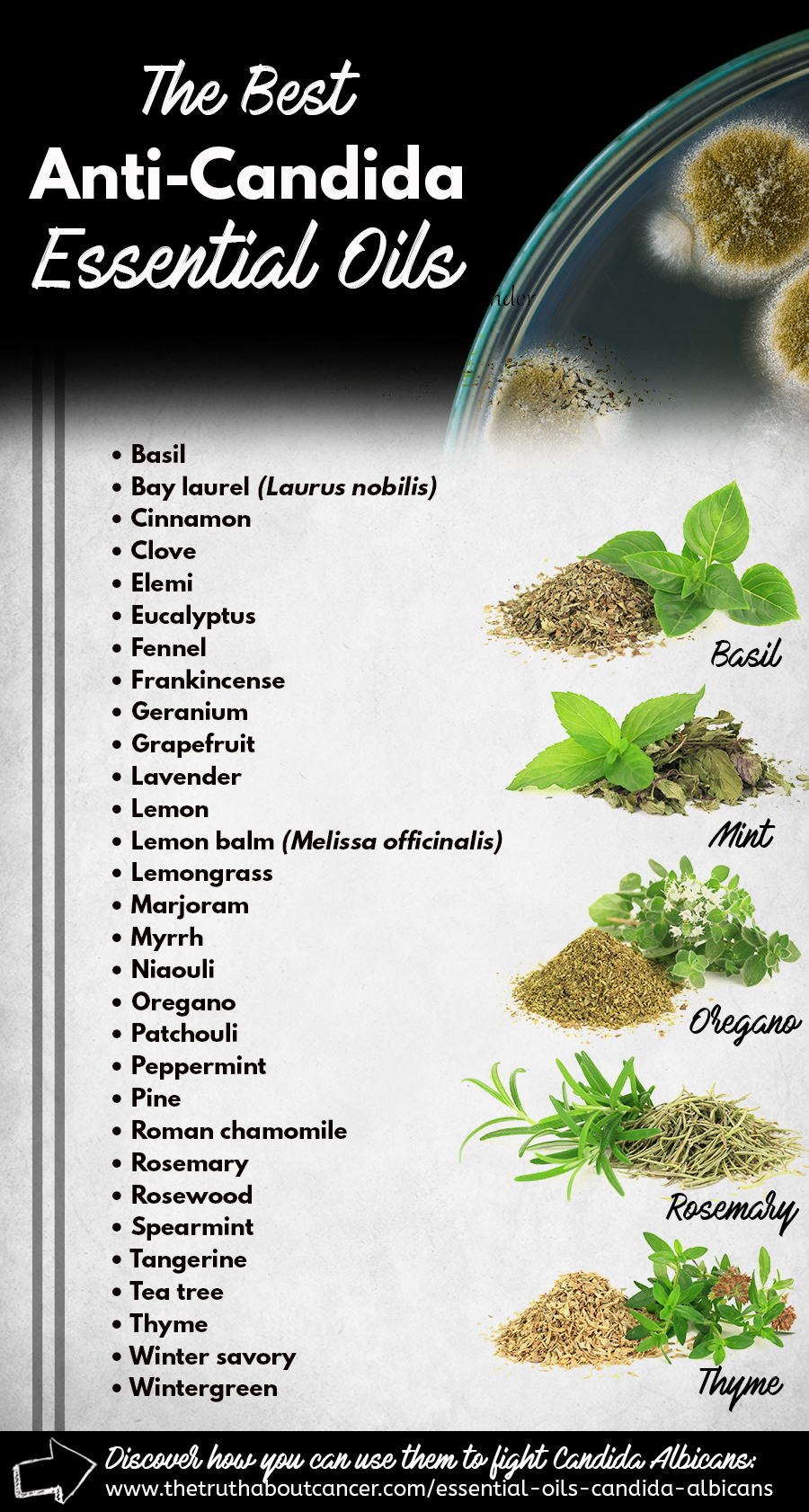 Anti-candida-essential-oils-list