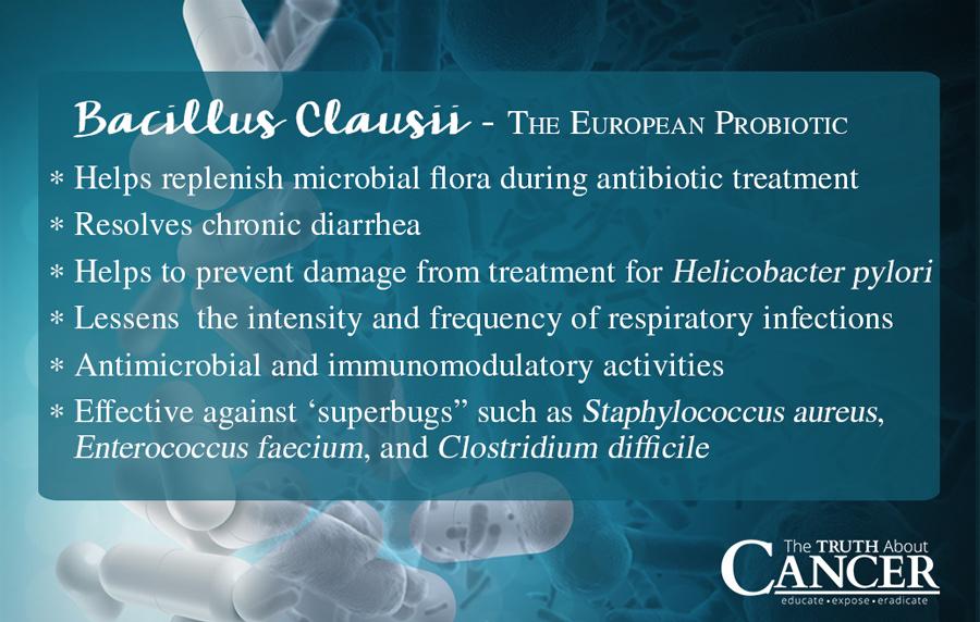 Bacillus-Clausii-european-probiotics
