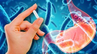 Bacillus Coagulans: A Resilient Probiotic for Maximum Digestive Support