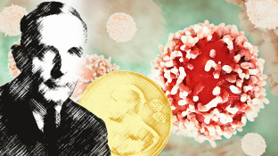 What Otto Warburg Actually Discovered About Cancer