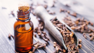 Oil of Cloves - the Aromatic, Anti-Cancer Essential Oil
