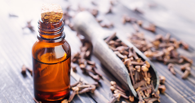 Essential Clove Oil - Effective Remedy Since The Middle Ages
