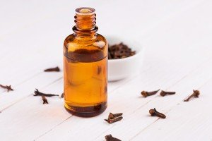 Clove oil has powerful anti-inflammatory and anti-fungal properties