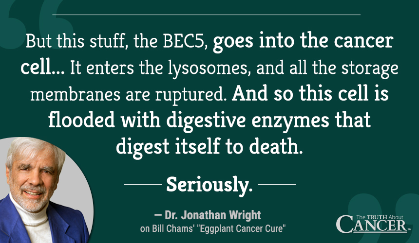 BEC5... Floods the cells with digestive enzymes that digest itself to death. Seriously.