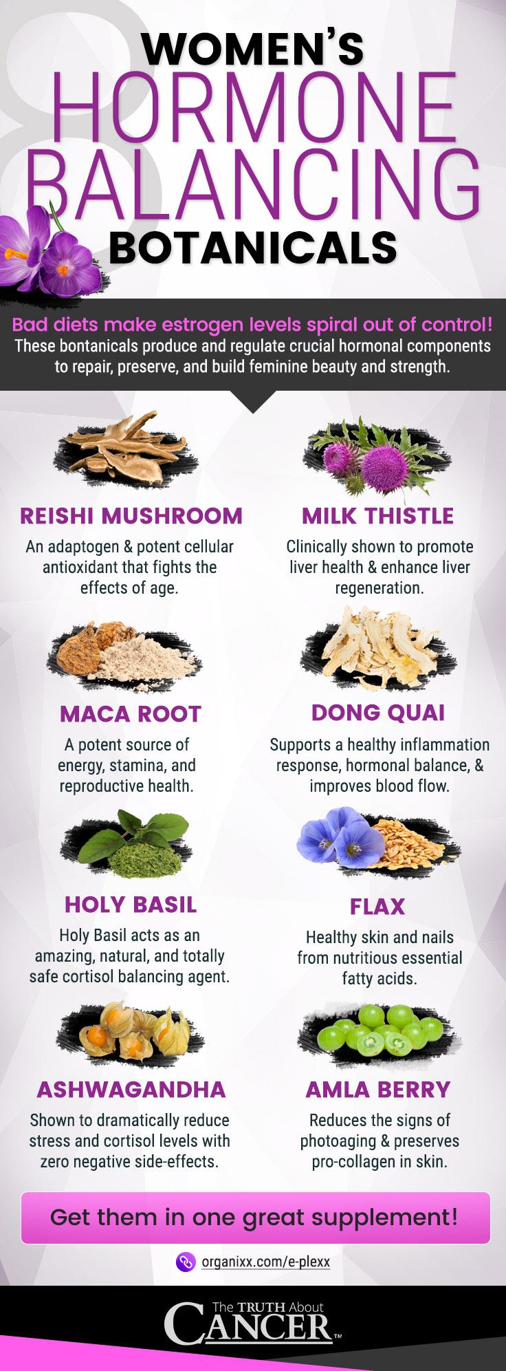 Which Foods Help High Estrogen
