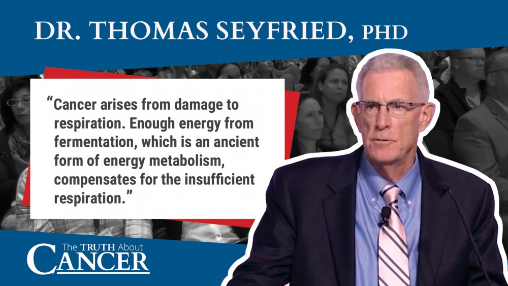Thomas seyfried quote