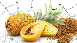 How Systemic Proteolytic Enzymes Fight Cancer