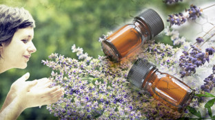 Lavender Essential Oil Uses and its Benefits for Cancer Patients