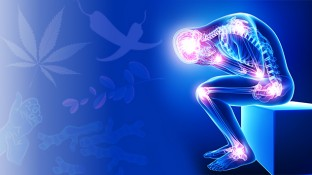 In Pain? 7 Natural Pain Management Techniques to Consider