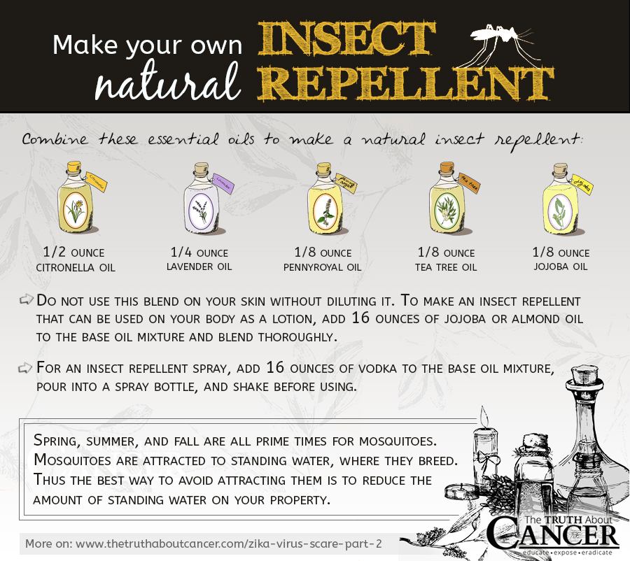 Natural-insect-repellent-prevent-zika
