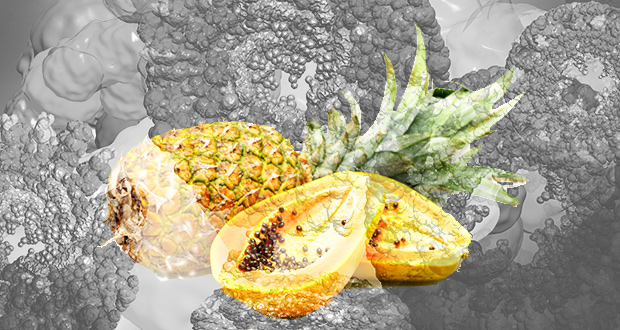 Keep Cancer at Bay with Enzyme-Rich Raw Foods
