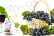 Resveratrol-prevents-cancer