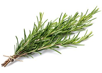 Rosemary contains potent antioxidant and anti-inflammatory phytochemicals