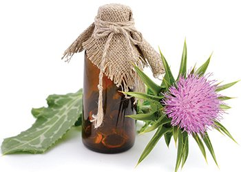 Silymarin the main active ingredient in milk thistle