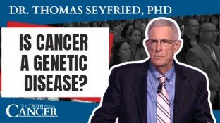 Is Cancer a Genetic Disease? The True Origin of Cancer (video)
