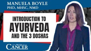 Introduction to Ayurveda and the 3 Doshas (video)