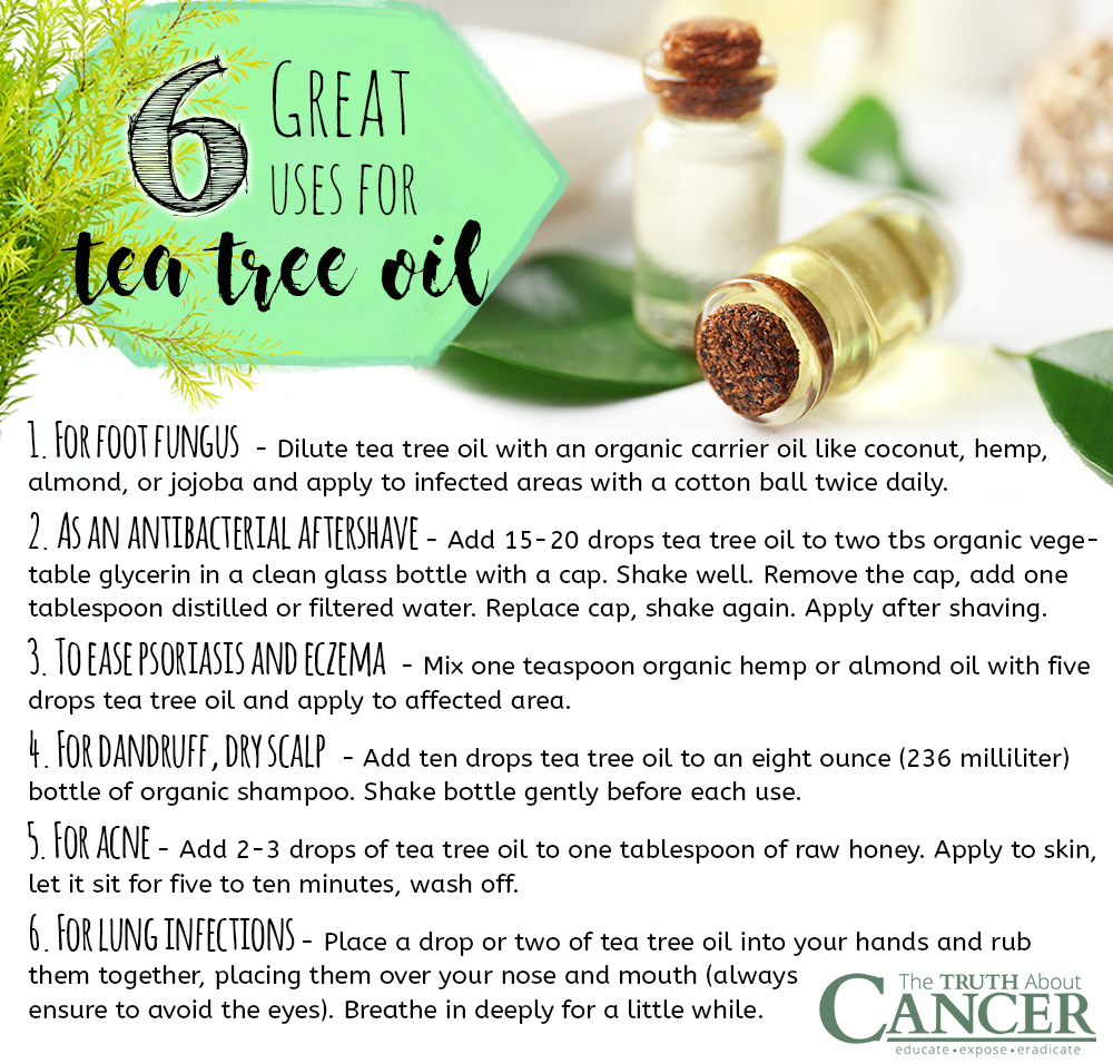 Amazing Benefits of Using Tea Tree Oil recommendations