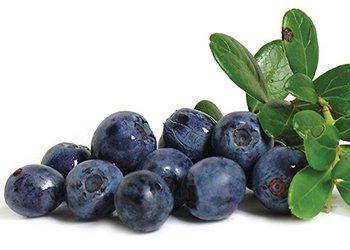 anthocyanin anti-cancer food