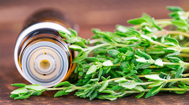 Why It's Time to Discover the Benefits of Thyme Essential Oil by The Truth About Cancer.