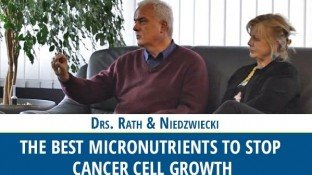 The Best Micronutrients to Stop Cancer Cell Growth (video)