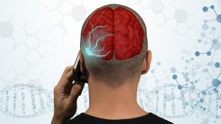 Can SAR Value Help You Choose the Safest Cell Phone?