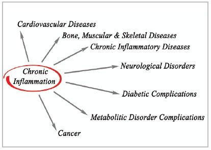 The truth about inflammation and cancer part 1 chronic inflammation publicscrutiny Choice Image