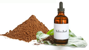 Discover Why Fulvic Acid is So Good for Your Gut, Brain & Skin