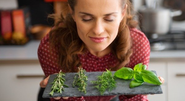healing-herbs