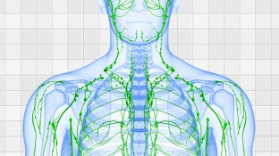 4 Ways to Keep Your Lymphatic System Healthy