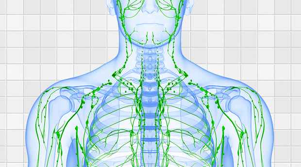 lymphatic-system-activation